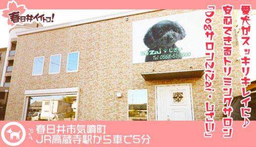 【春日井】愛犬がスッキリキレイに♪春日井で安心できるトリミングサロンなら『DogサロンZiZai・じざい』で決まり!